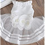 """Colorfulpets Pet Wedding Dress Cute Dog Dress for Small Puppies (L (Chest 16"""" Back 15.5""""))"""