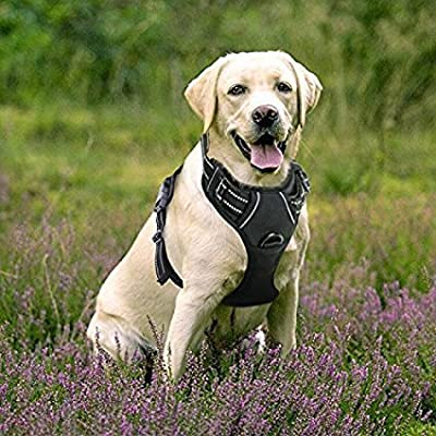 Openuye Front Range Dog Harness No-Pull Pet Harness Adjustable Outdoor Pet Vest 3M Reflective Oxford Material Vest for Dogs Easy Control for Small Medium Large Dogs