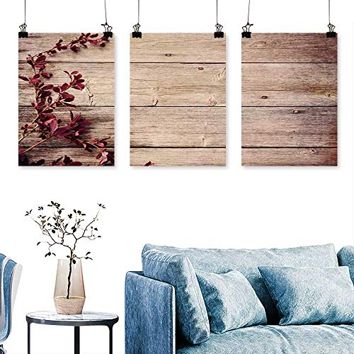 SCOCICI1588 3-Piece Home Decoration Barberry Branch on a Wooden Background to Hang for Living Room No Frame 16 INCH X 24 INCH X 3PCS