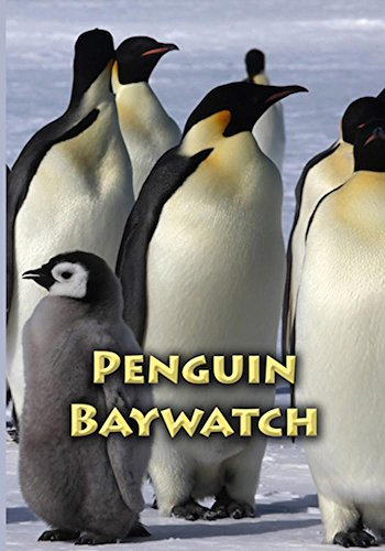 (Penguin Bay)