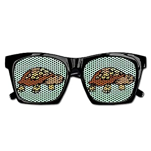 Cherry Park Angry Turtle Rim Party Sunglasses & Eyewear