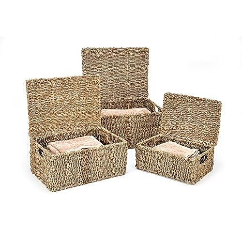 Very Lidded Baskets: Amazon.com HO47
