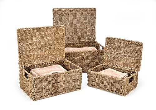 Trademark Innovations Rectangular Seagrass Baskets with Lids (Set of 3) (Small Storage Baskets With Lids)