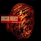 Descending to End by Briggan Krauss (1999-11-16)