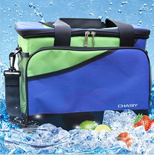 Insulated Lunch Bag Non Toxic Liner Easy Pull Zippers Padded Grab Handle Adjustable Detachable Shoulder Strap Pad  Large Cooler Tote Bag   Double Deck Cooler  Blue Green