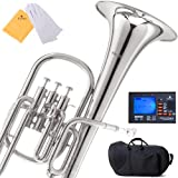 Mendini E-Flat Alto Horn, Nickel Plated and Tuner, Case - MAH-N+92D