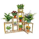 Malayas Wooden Plant Stand 10 Tier Plant Flower Pots Display Rack Shelf Holder for Garden Patio Corner Indoor&Outdoor Decor