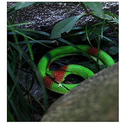 Review Halloween Rubber Rainforest Snakes