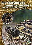 Die Griechische Landschildkröte: Testudo hermanni boettgeri (Art für Art)