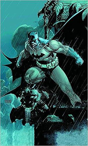 Amazon Com Batman Hush Absolute Edition 9781401204266 Loeb Jeph Books