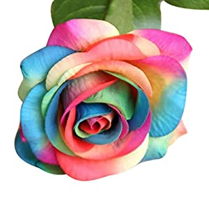 LINGERY 10 PCS Bouquet Artificial Rose Fake Silk Flower Leaf Home decorations for Bridal Wedding Bouquet, Birthday Flowers Bunch Hotel Party Garden Floral Decor (Multicolor) 2