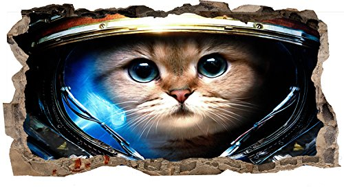Startonight 3D Mural Wall Art Photo Decor Astronaut Cat in Space Amazing Dual View Surprise Medium 32.28 inch By 59.06 inch Wall Mural Wall Paper for Living Room or Bedroom Space Collection Wall Art ($100 Wallpaper Bill)