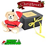 Teddy bear bluetooth speakers Wireless Portable Cute Mini Animal Wireless Speaker Stereo for Kids,girls,Travel, Parties and Outdoors, Gift Idea-lovely toy