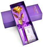 ZJchao Gold Foil Rose Best Gift for Her on Valentine's Day, Mother's Day, Grandparents Day