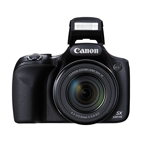 Canon PowerShot SX530 HS - Wi-Fi Enabled Digital Camera with deluxe accessory bundle including 32GB SDHC memory card Class 10 & lens cleaning kit + Extra Battery & AC/DC Turbo Travel Charger. (Best Digital Camera For Wildlife Photography 2019)