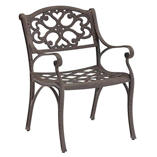 Biscayne Rust Bronze Dining Arm Chair Pair by Home Styles