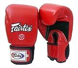 Fairtex Muay Thai Boxing Gloves BGV1 BR