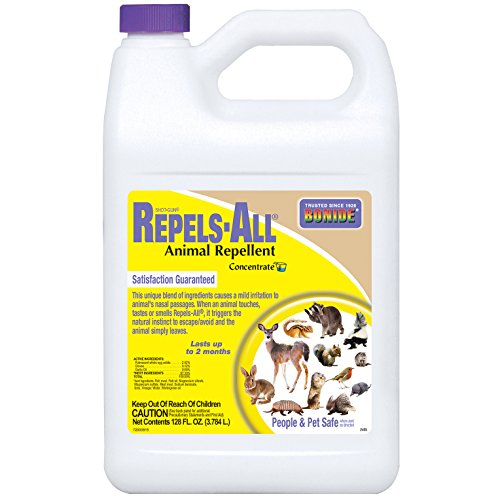 Bonide 2405 Concentrate Repels Animals product image