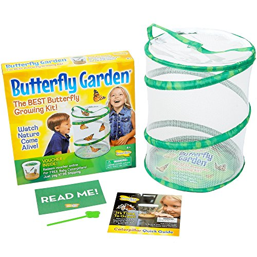 Insect Lore Butterfly Growing Kit Toy - Includes Voucher Coupon for 5 Live Caterpillars to Butterflies - Caterpillar Kit