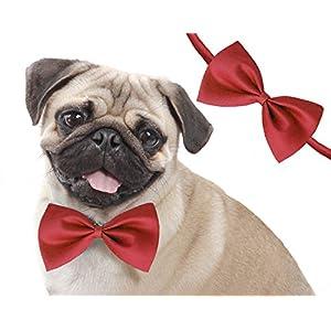 Sage Square Adjustable Neck Bow Cum Necktie for Dog/Puppy/Cat/Kitten (Red)