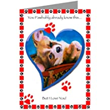 Six Pembroke Welsh Corgi on Top of Haute Couture Inspired Luggage Valentines Day Cards In A Boxed Set