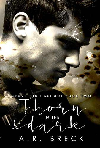 Thorn in the Dark (Grove High School Book Two)