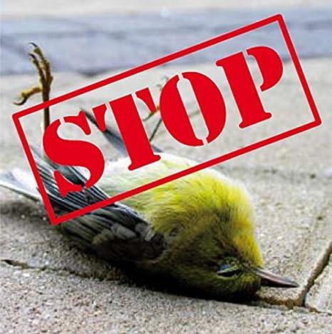 Set Mit 20 Birdstickern Vogelschutz Aufkleber Vögel Retten Anprallschutz