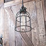 Industrial Vintage Style Metal Wire Curved Cage