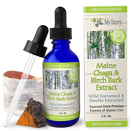 Maine Chaga & Birch Bark Extract, Natural Source of Betulin, Wild Harvested, Double Extracted ()