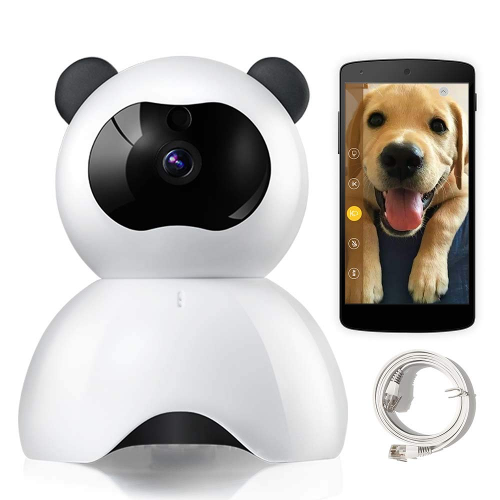 Best Rated In Pet Cameras Amp Monitors Amp Helpful Customer
