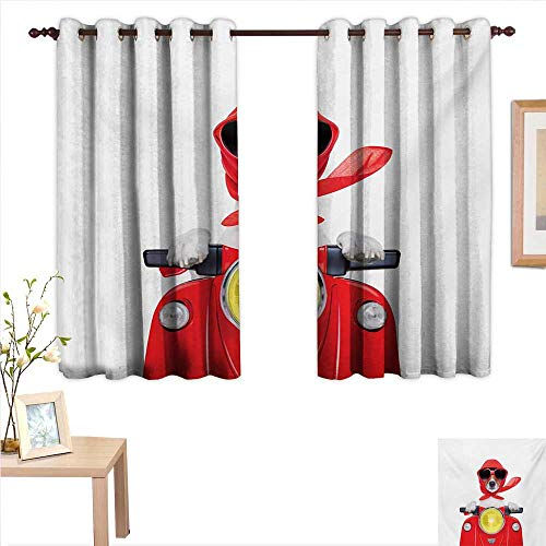 Dog Driver Decor Curtains by Stylish Canine with Scarf Sunglasses Fashion Model Riding Scooter Funny Animal 55