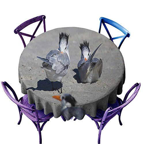- Acelik Round Solid Polyester Tablecloth,Bird Baths,Party Decorations Table Cover Cloth,43 INCH