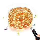 Homestarry Outdoor String Lights,Music Dimmable LED String Lights With Remote,Indoor Decorative Cooper Wire Warm White Lights for Room,Bedroom,Patio,Christmas Tree,Party,Wedding(33Ft,100Leds)