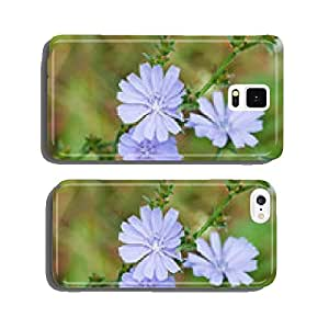 blue flowers of common chicory close up cell phone cover case iPhone6 Plus