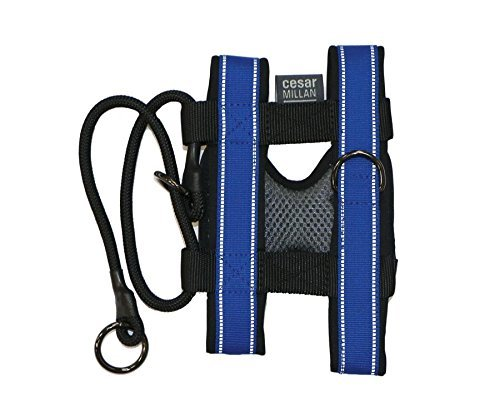 Cesar Millan Blue Dog Collar for Large Dogs, Pack Leader Dog Collar with Harness and Non-Slip Lead, Dog Accessories Designed to Train Dogs Not to Pull ()