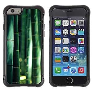 Suave TPU GEL Carcasa Funda Silicona Blando Estuche Caso de protección (para) Apple Iphone 6 PLUS 5.5 / CECELL Phone case / / Forest Nature China Sunshine /