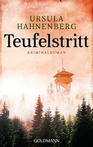 Teufelstritt: Ein Fall für Julia Sommer 1 - Kriminalroman