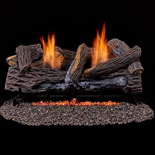Duluth Forge Vent Free Dual Fuel Gas Log Set - 24 in. Berkshire Stacked Oak - Remote Control (Vent Free 24 Inch Gas Logs compare prices)