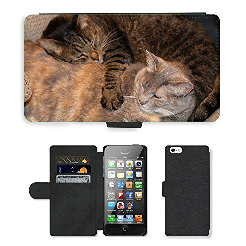 Hot Style Cell Phone Card Slot PU Leather Wallet Case // M00130866 Cats Siblings Pet Cute Animal // Apple iPhone 5 5S - Sibling Designer