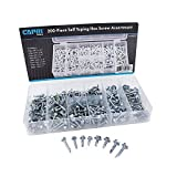 Capri Tools 10024 Hex Self Tapping Screw Assortment, 200-Piece