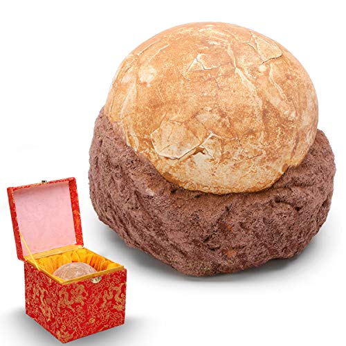 ZUINIUBI Dinosaur Egg Simulation Fossil Home Decoration Fossilized Jurassic Cretaceous World Birthday Gift for Kids by ZUINIUBI (Image #2)