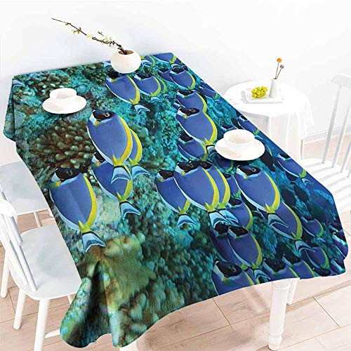 Homrkey Waterproof Tablecloth Ocean Decor Collection School of Powder Tang Fishes in The Coral Reef Maldives Photography Aqua Blue Yellow Party W60 xL102