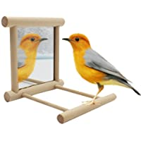 Bird Stand Perch with Mirror for Parrot Budgie Parakeet Cockatiels Conure Finch Lovebird African Grey Amazon Cockatoo Cage Wood Toy