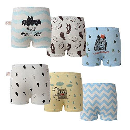 Skhls Boys Underwear Toddler Little Hipster Boyshort Kids Briefs Cotton Panties 6 Pack, (Hipster Boxer Briefs)