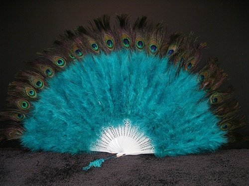 peacock feather hand fan - 2