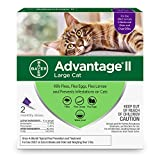 Bayer Animal Health Advantage II Flea prevention Large Cats - over 9 lbs - 2 doses