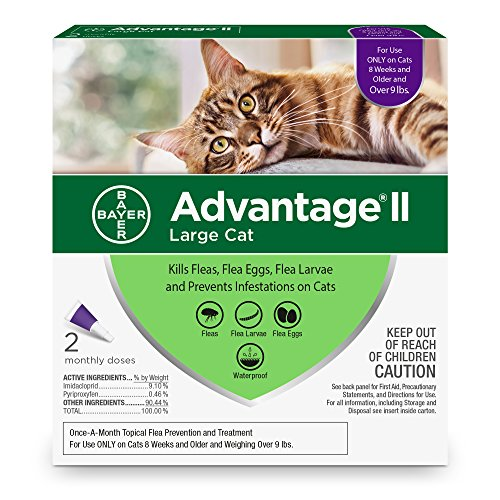 Bayer Animal Health Advantage II Flea prevention Large Cats, over 9 lbs, 2 doses