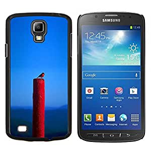 LECELL--Funda protectora / Cubierta / Piel For Samsung Galaxy S4 Active i9295 -- Naturaleza Pájaro Primavera Azul Red Robin --