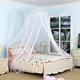 Circular Mosquito Netting Diamond Canopy for Indoor/Outdoor, Camping Or Bedroom Fit A King Size Bed(White)