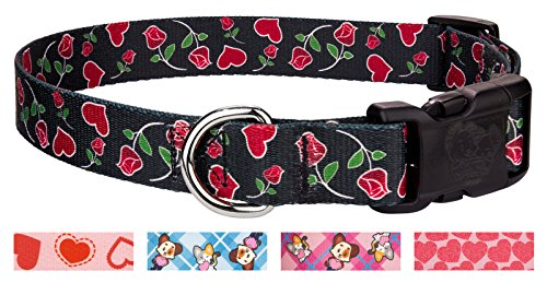 Country Brook Design | Deluxe Roses for My Valentine Dog Collar - Large